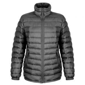 Branded Ice Bird Padded jackets