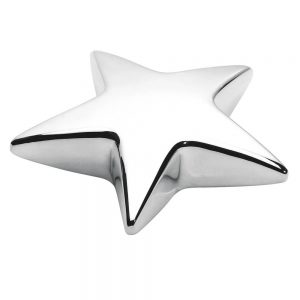 Branded Star Paper Weight